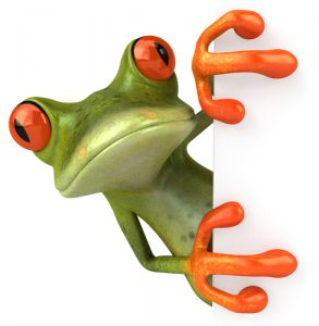 frog_animated