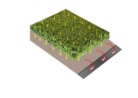 pet turf grass cleaning