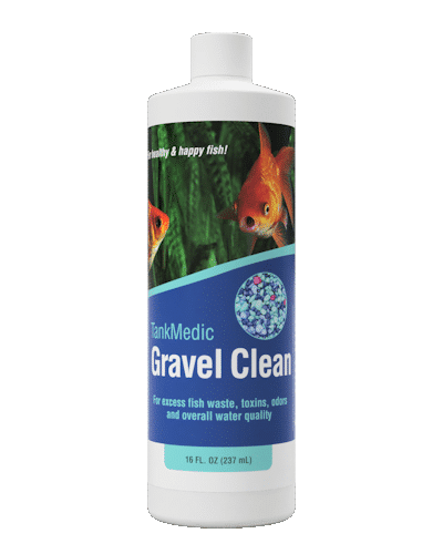 Aquatic Animal Health Through Healthy Bacteria Gravel Clean