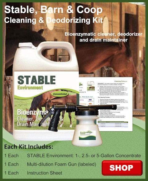 Stable Barn and Coop Kit