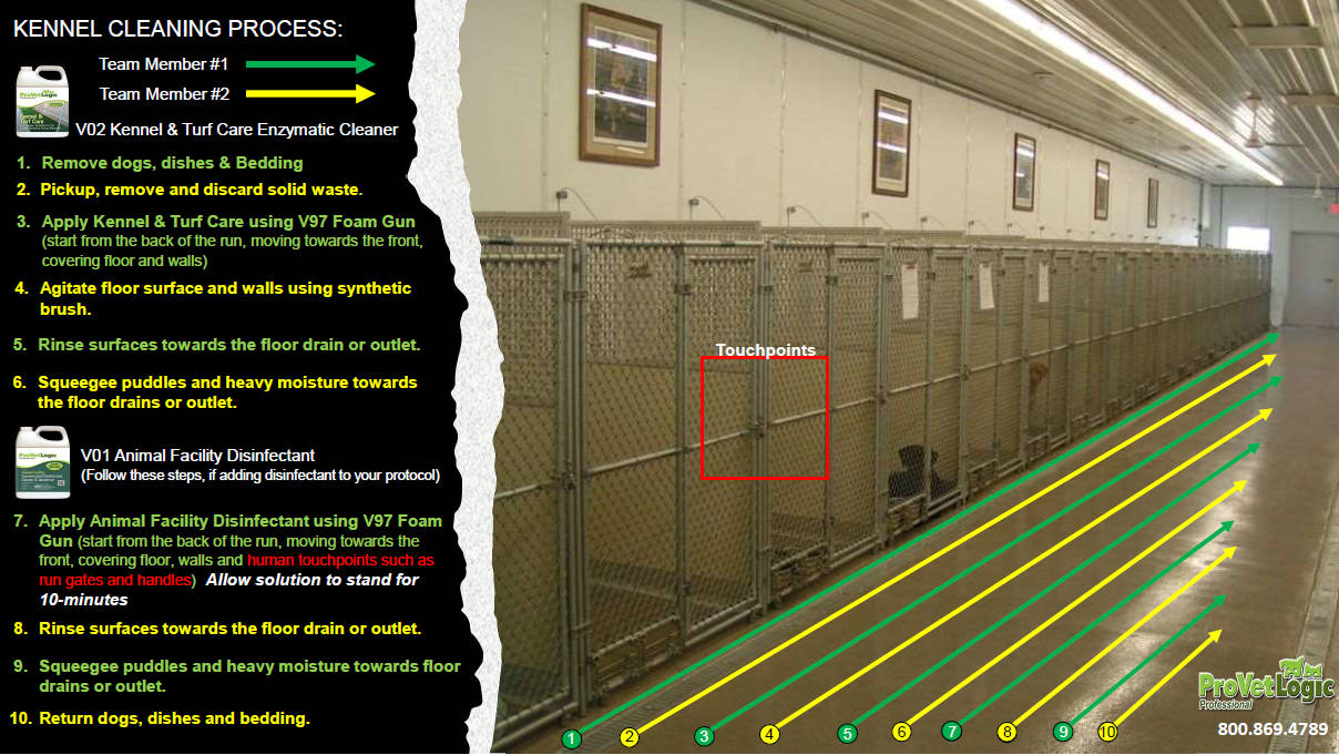 Kennel Cleaning Process